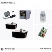 Set Unterflurantrieb CAME FROG AE/2